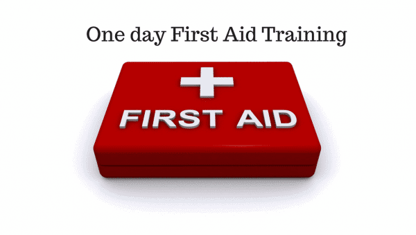 Basic First Aid Training Course